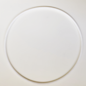 White Waterco trimline lid Oring against a white background.