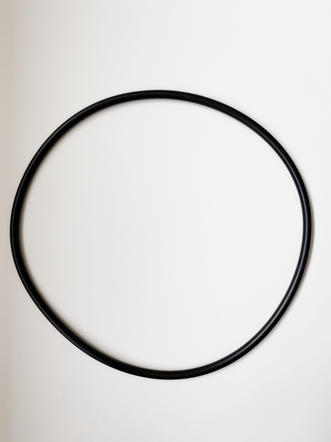 Black Waterco Opal cartridge filter lid Oring against a white background.